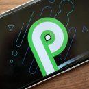 Android P nasıl olacak? Ne Gibi Yenilikler Getirecek ?