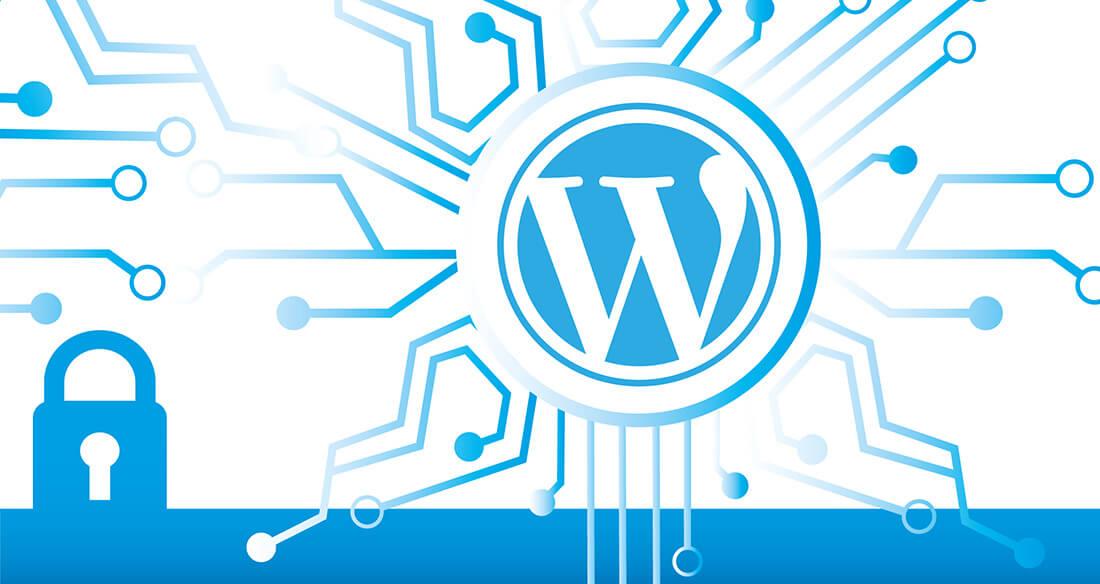 WordPress Admin Paneli Nasıl Korunur